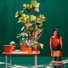 Chilean Playwright/Director Manuela Infante's ESTADO VEGETAL Runs May 2-3