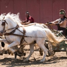 Smithsonian Channel Presents Two-Hour Special ROME'S CHARIOT SUPERSTAR
