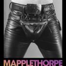 Samuel Goldwyn Films to Release MAPPLETHORPE Starring Matt Smith