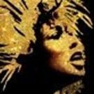 Additional Casting Announced for Tina Turner Musical TINA!