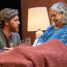 BWW Review: Portland Stage's COMPLICATIONS FROM A FALL Struggles with Issues of Aging