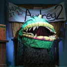 BWW Review: Raleigh Little Theatre's LITTLE SHOP OF HORRORS