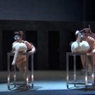 VIDEO: A SWAN LAKE with 1,000 Gallons of Water