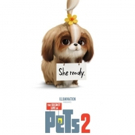VIDEO: Watch the Daisy Trailer for THE SECRET LIFE OF PETS 2