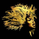 TINA - THE TINA TURNER MUSICAL Will Open in Germany in 2019; Plans Underway for Broadway