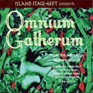 Holiday Show OMNIUM GATHERUM Opens Next Week at Island Stage Left Photo