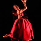 BWW Review: TRANSCENDING MOVEMENT at Sarasota Ballet Photo