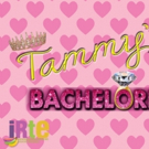 Cast And Guests Announced For TAMMY'S BACHELORETTE Photo
