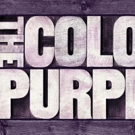 THE COLOR PURPLE Begins Performances Tonight At Paper Mill Playhouse Photo