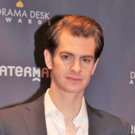 Photo Coverage: On the Red Carpet at the Drama Desk Awards! Photo
