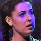 BWW Review: Media Theatre's THE WIZARD OF OZ Photo