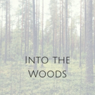 Out of the Box Theatrics INTO THE WOODS Extends Off-Off-Broadway
