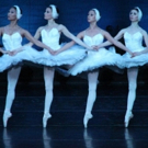 BWW Preview: SWAN LAKE by MOSCOW FESTIVAL BALLET January 13 2018