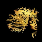 New Casting Information Announced for Premiere of Tina Turner Musical TINA Photo