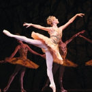 BWW Review: National Ballet Delivers Grand Spectacle with THE SLEEPING BEAUTY
