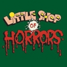 Mercury Theater Chicago Announces Production Of LITTLE SHOP OF HORRORS Photo