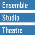 Ensemble Studio Theatre Extends BEHIND THE SHEET Photo