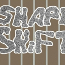 SHAPE SHiFTER Opens This Weekend in Brooklyn