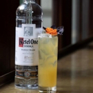 KETEL ONE VODKA and Cocktail Gardening Recipes
