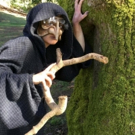 North Shore Light Opera Society ventures INTO THE WOODS for its 70th Anniversary Prod Photo