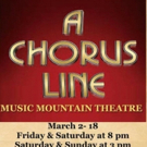 A CHORUS LINE Comes to Music Mountain Theater