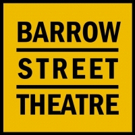 Barrow Street Theatricals Host the US Premiere of NASSIM Photo