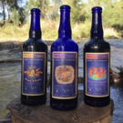 Wild Tonic Releases Dancing Naked, Mind Spank and Wild Love 7.6% ABV Hard Jun Kombuch Photo