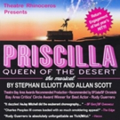PRISCILLA, QUEEN OF THE DESERT Extends at Gateway Theatre Photo