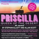 PRISCILLA, QUEEN OF THE DESERT Extends at Gateway Theatre