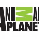 MONSTER WEEK 2018 Returns to Animal Planet Memorial Day Weekend