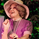 BWW Review: Desert Rose Presents a Not-to-be-Missed Production of Tennessee Williams' SUDDENLY LAST SUMMER
