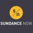 Sundance Now's Gripping International Thriller NEXT OF KIN to Make Its U.S. Debut Thursday, June 21