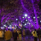 L.A. ZOO LIGHTS to Set the Zoo Aglow with Wonder This Winter Photo