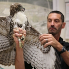 Smithsonian Channel to Premiere BIRD VS. PLANE: MIRACLE ON THE HUDSON