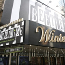 BWW TV: Broadway Walks the Red Carpet On Opening Night Of BEETLEJUICE Photo