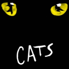 Broadway Training Center Of Westchester Presents CATS