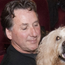 The NY Cat And Dog Film Festival Comes To Larkspur Photo