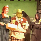 Photo Flash: Get a First Look at SHREK at Little Radical Theatrics Photo