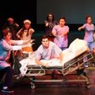 BWW Review: Lyric Opera Theatre Presents A NEW BRAIN