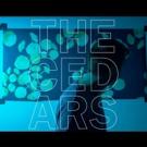 John Vanderslice Streams 'Triumphant' New Album THE CEDARS on The Fade