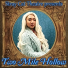 BWW Review ~ Stray Cat Theatre Presents Leah Nanako Winkler's TWO MILE HOLLOW ~ Madcap Family Dysfunction With A Message