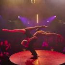 BWW Review: LA SOIREE at Aldwych Theatre