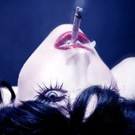 BWW Review:  MEOW MEOW Brings the Party to Kennedy Center Photo