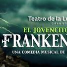 EL JOVENCITO FRANKENSTEIN prepara su estreno Photo