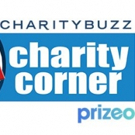 BroadwayWorld Teams with Charity Network to Launch Charity Corner! Photo