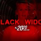 ABC News Announces Two-Hour Documentary on the Black Widow Killer Photo