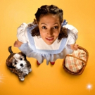 Follow the Yellow Brick Road to Birmingham Rep for THE WIZARD OF OZ Photo