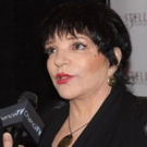 Liza Minnelli Shuts Down Reports About Involvement in Upcoming Judy Garland Movie Photo