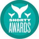 Tiffany Haddish Among Nominees for 10th Annual SHORTY AWARDS; Full List Revealed!