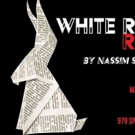 BWW Review: WHITE RABBIT, RED RABBIT is an Exercise in Manipulation Photo